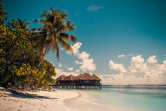 Vintage Tropical beach background Stock Images