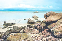 Vintage tropical beach Stock Images