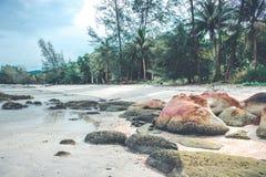 Vintage tropical beach Stock Photo