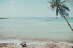 Vintage tropical beach seascape with palm tree in summer. Stock Photo
