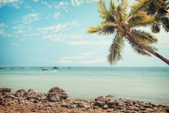 Vintage tropical beach seascape with palm tree in summer. Royalty Free Stock Photography