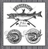 Vintage trout fishing emblems, labels and design Stock Photo