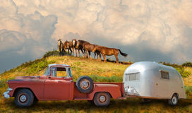 Vintage Truck, Camper, Camping, Horses, Nature. A vintage truck and campers is in the great outdoors and nature camping with wild horses. Each wildlife horse is Royalty Free Stock Image