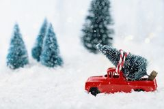 Vintage Truck and Christmas Tree. 1950`s antique vintage red truck hauling a Christmas tree home through a snowy winter wonder land. Extreme shallow depth of Stock Photography