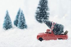 Vintage Truck and Christmas Tree. 1950`s antique vintage red truck hauling a Christmas tree home through a snowy winter wonder land. Extreme shallow depth of royalty free stock photo