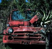 Vintage truck used as a planter Stock Photos