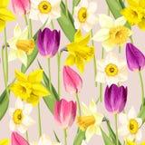 Vintage tulip and daffodil seamless Stock Image