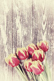 Vintage Tulip Flowers on Wooden Backdrop Royalty Free Stock Image