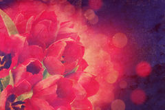 Vintage tulips background Royalty Free Stock Photography