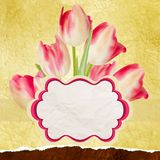 Vintage tulips polka dot template. EPS 10 Royalty Free Stock Photography