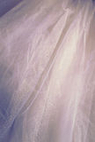 Vintage tulle chiffon texture background. wedding concept Stock Image