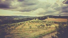 Vintage tuscan landscape Stock Photography