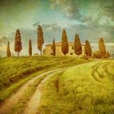 Vintage tuscan landscape Royalty Free Stock Image