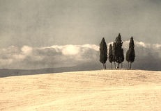Vintage tuscan landscape Stock Photos
