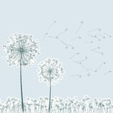 Vintage two dandelions in wind. EPS8 Royalty Free Stock Photography