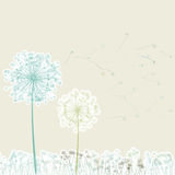 Vintage two dandelions in wind on light. EPS 8 Stock Photography