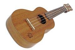 Vintage ukulele Stock Images