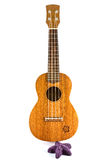 Vintage ukulele. Image vintage ukulele on white Royalty Free Stock Images