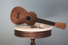Vintage Ukulele and Sea Shells. A soprano Ukulele sits on a marble antique table with small seashells stock image