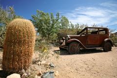 Vintage USA car outdoors with cactus Stock Photography