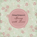 Vintage pattern background Royalty Free Stock Image