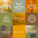 Vintage Vector Badges Royalty Free Stock Photography