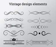 Vintage vector design elements Stock Images