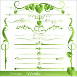 Vintage Vector Designs Divider Illustrations Stock Photography