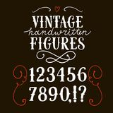 Vintage  vector figures. Hand drawn vintage vector figures on dark background.Nice font for your design Royalty Free Stock Photo