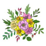 Vintage vector floral composition. With flowers, buds and leaves of roses, lily and narcissus, imitation of engraving, hand drawn design element Royalty Free Stock Photography