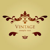 Vintage vector floral frame Royalty Free Stock Photography