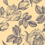 Vintage vector floral seamless pattern Royalty Free Stock Photo