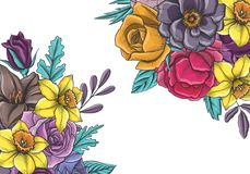 Vintage vector floral composition Royalty Free Stock Photos