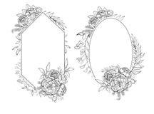 Vintage frames of peonies in botanical style Stock Illustration