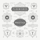 Vintage Vector Ornaments Decorations Design Royalty Free Stock Image