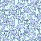 Vintage vector pattern with field of iris flowers Royalty Free Stock Photography