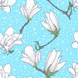 Vintage vector pattern with magnolia flowers Stock Images