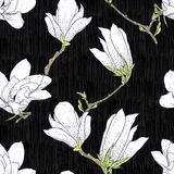 Vintage vector pattern with magnolia flowers Royalty Free Stock Photos