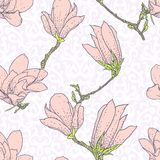 Vintage vector pattern with pink magnolia flowers Royalty Free Stock Photo