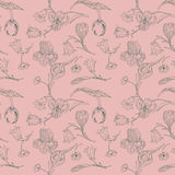 Vintage vector seamless pattern with flowers Stock Images