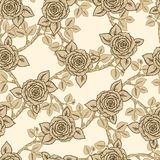Vintage vector seamless pattern with  roses Royalty Free Stock Photos