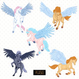 Vintage vector set of winged pegasus Royalty Free Stock Photos