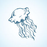 Vintage vector sketch of jellyfish Royalty Free Stock Images