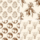 Vintage vegetable patterns Royalty Free Stock Photo