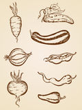 Vintage vegetables set Royalty Free Stock Photo