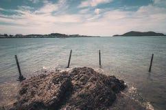 Vintage verde da paisagem da natureza da ilha e do mar Imagens de Stock Royalty Free