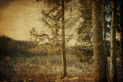 Vintage vinter landscape Royalty Free Stock Photo
