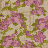 Vintage Viola flowers Background Royalty Free Stock Image