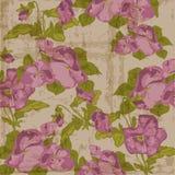 Vintage Viola flowers Background Royalty Free Stock Image