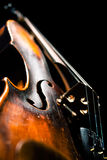 Vintage violin on black background Stock Photos